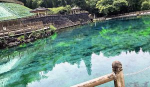 丸池湧水の写真1